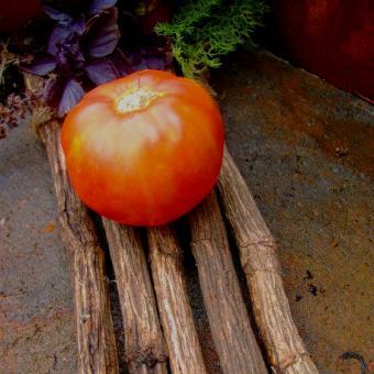 Armenian tomato seeds