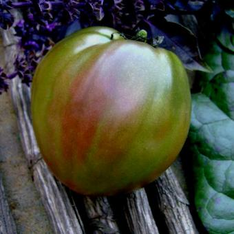Black heart tomato seeds