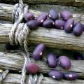 Amethyst-bean-seeds