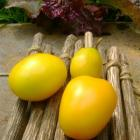 Kang Bing Tomato Seeds