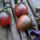 Vernissage Black Tomato Seeds