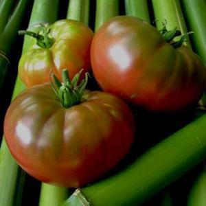 Mikado Black Tomato Seeds